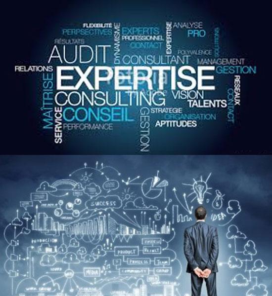 conseil et expertise